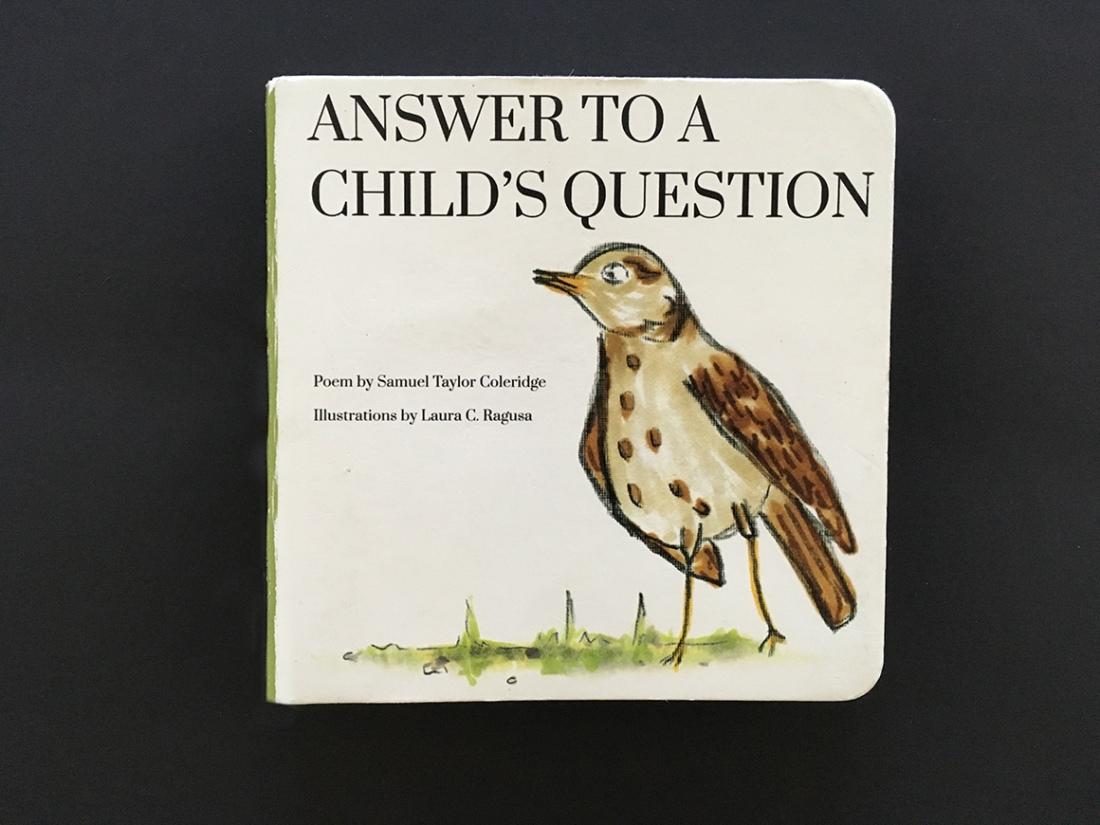 Bird_book_cover