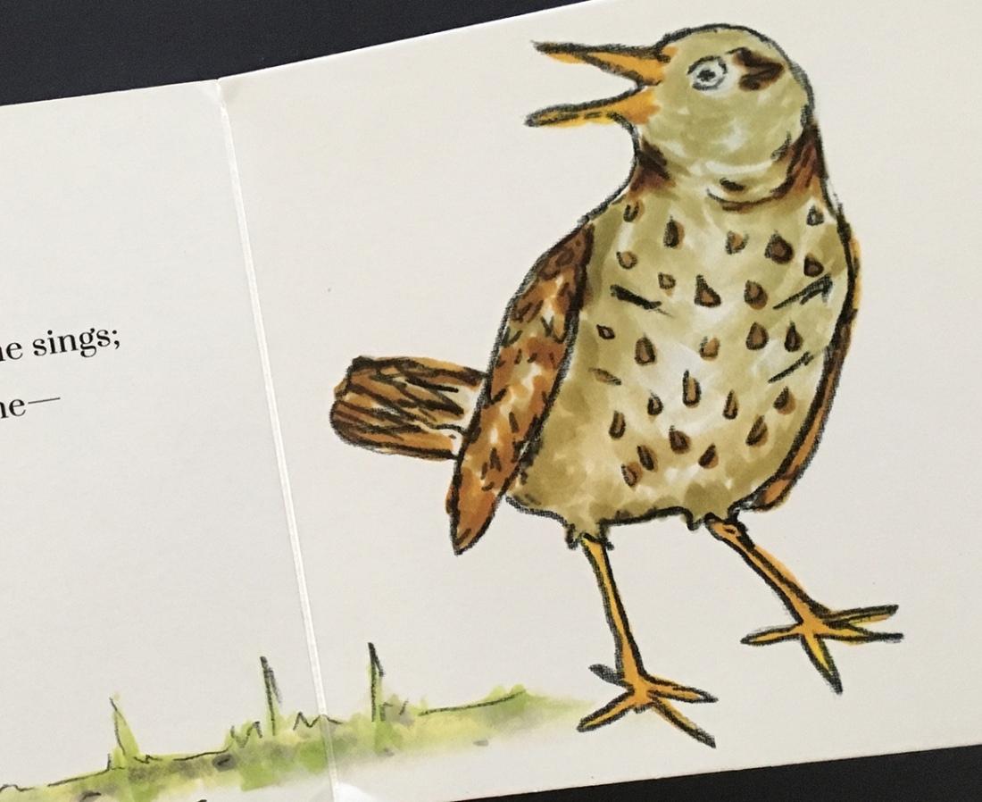 Bird_detail1