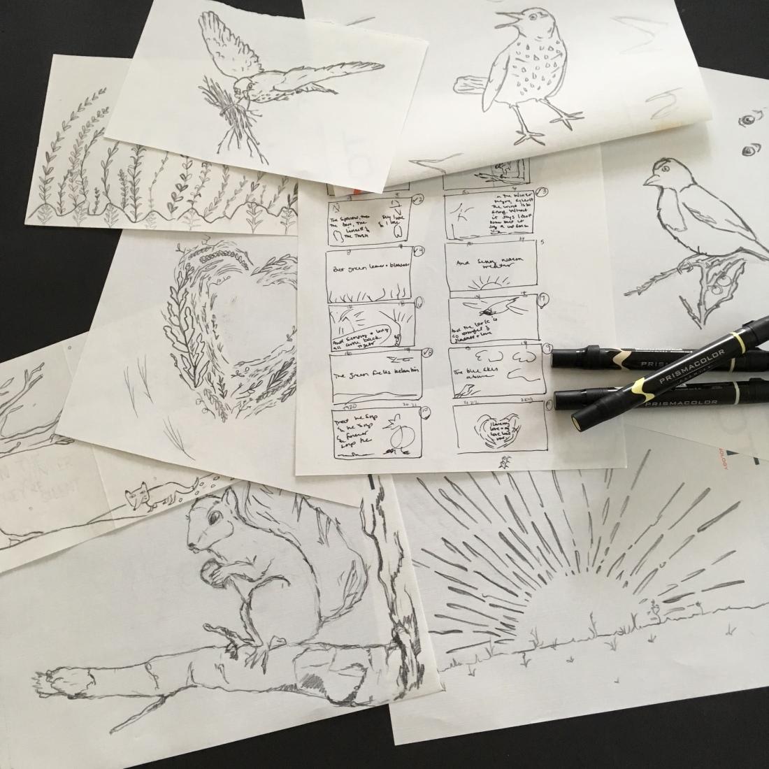 Bird_detail_sketchesv2