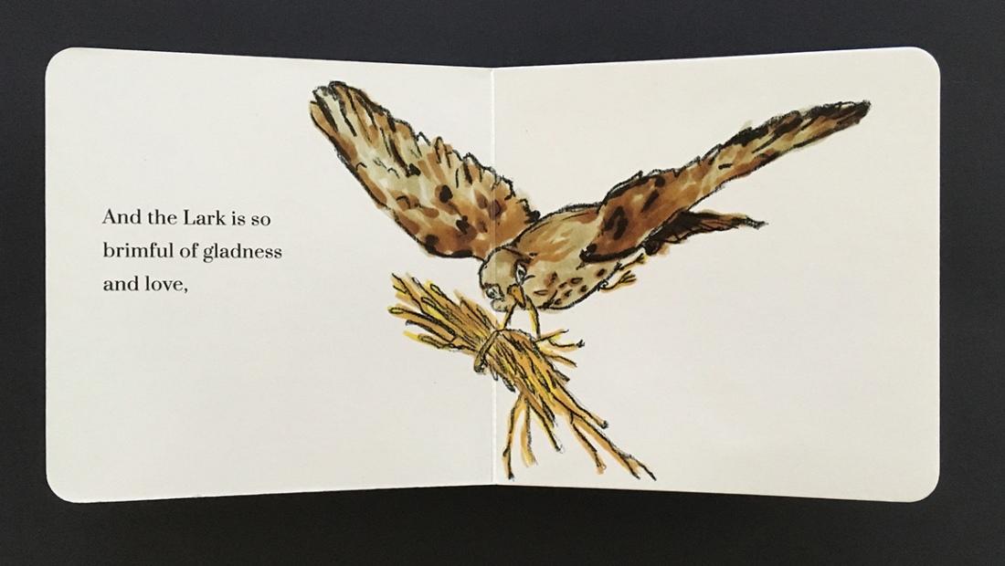 Bird_interior4