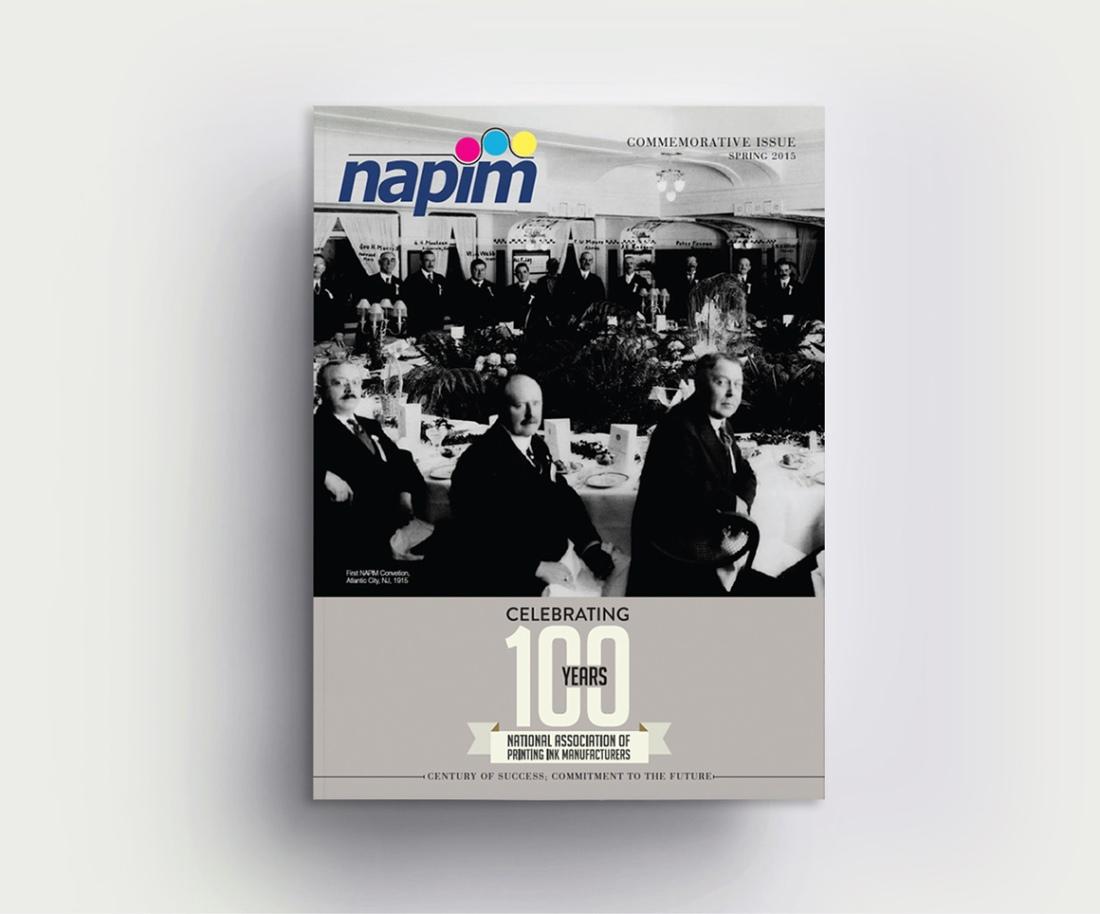Cover_NAPIMr